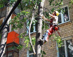 Работы альпинистов на объекте реновации в Москве